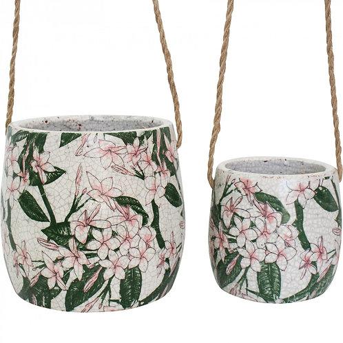 Frangipani Hanging Pots