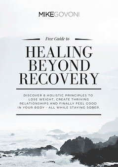 Copy of Holistic Recovery Wheel Guide.pn