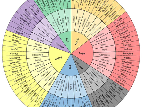 Wellbeing and the Feelings Wheel