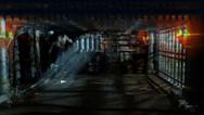 BillRogers-Ifan02.jpg