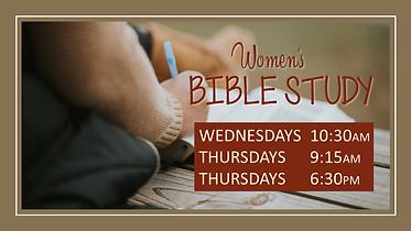 02032019 womens bible.png