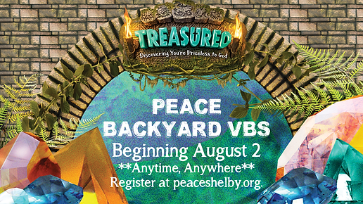 VBS Backyard 2021.png