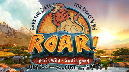 0722019 VBS.png