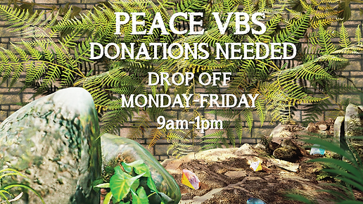 VBS Donation 2021.PNG