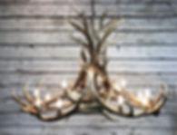 Elk Chandelier, large elk chandelier, antler lighting, rustic light, dining table lighting