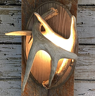 antler sconce, deer antler sconce, small antler light