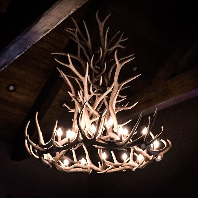 Making a statement #customantlershop #elkantlerchandeliers #interiordecor #interiordesign #mountainl