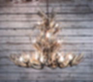 Antler chandelier, mule deer chandelier, large antle chandelier