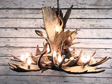 moose chandelier, huge antler chandelier, large moose chandelier, large antler lighting