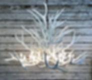 White Chandelier, modern chandelier, modern light, antler chandelier, white elk chandelier