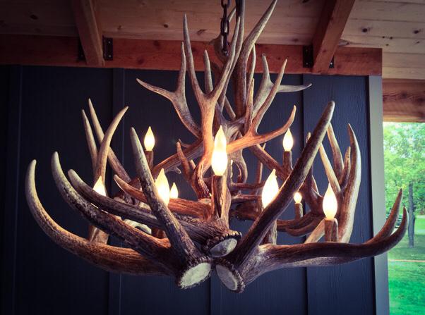 Long Ridge Elk