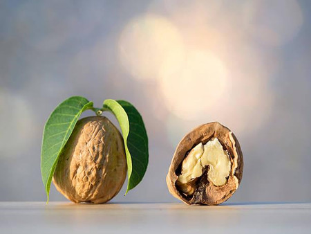 Walnut: An excellent source of omega-3
