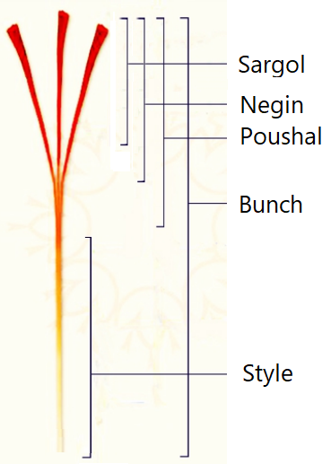 Types and categories of Saffron