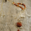 Thumbnail: Red Agate and Carnelian Necklace Set