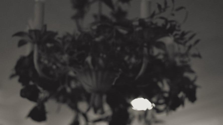 Abstract Flower Work Edit 4.18.20.jpg
