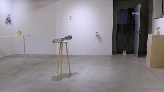 OFSギャラリー「白金5丁目アワード」 審査結果