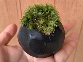 七輪陶芸と黒陶とは