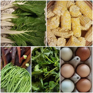 Veggies and Eggs.jpg