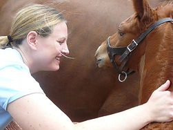 Abby Road Group Equine Accountant