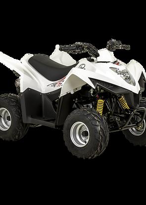 MAXXER 50cc