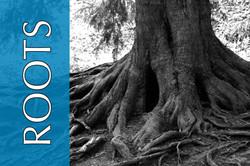 roots2 copy.jpg
