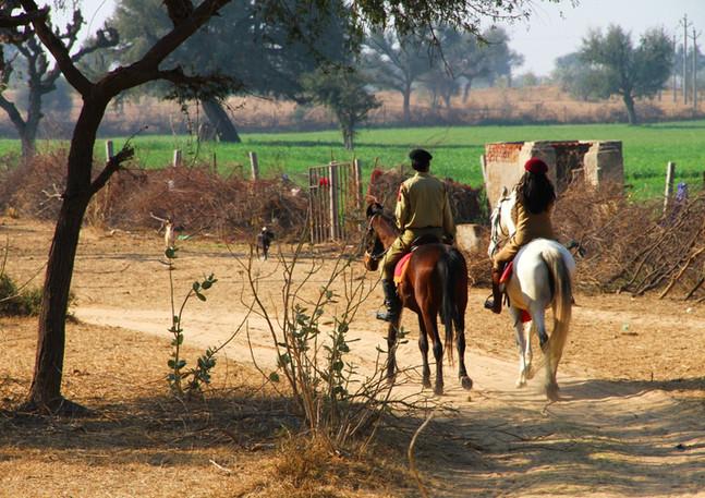 horse trails .jpg