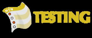NTN logo.png