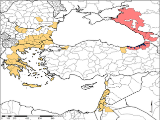 Territorial expansion of the invasive Aedes mosquito in Turkey