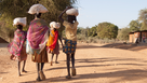 ISNTD Disease Brief: Female Genital Schistosomiasis & linkages with HIV