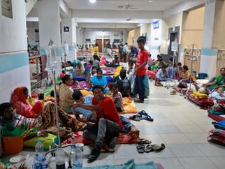 Dengue cases set to break records in 2019