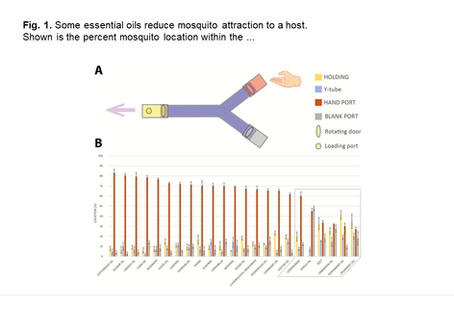 Assessing the repellent efficacy of essential oils