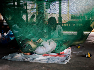 Prudence Hamade (Myanmar & UK): contracting dengue while working in an outbreak