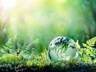 Investing in the green transition