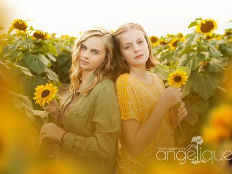 Sunflower Farm!