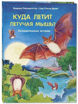 Куда летит летучая мышь? Познавательные истории.