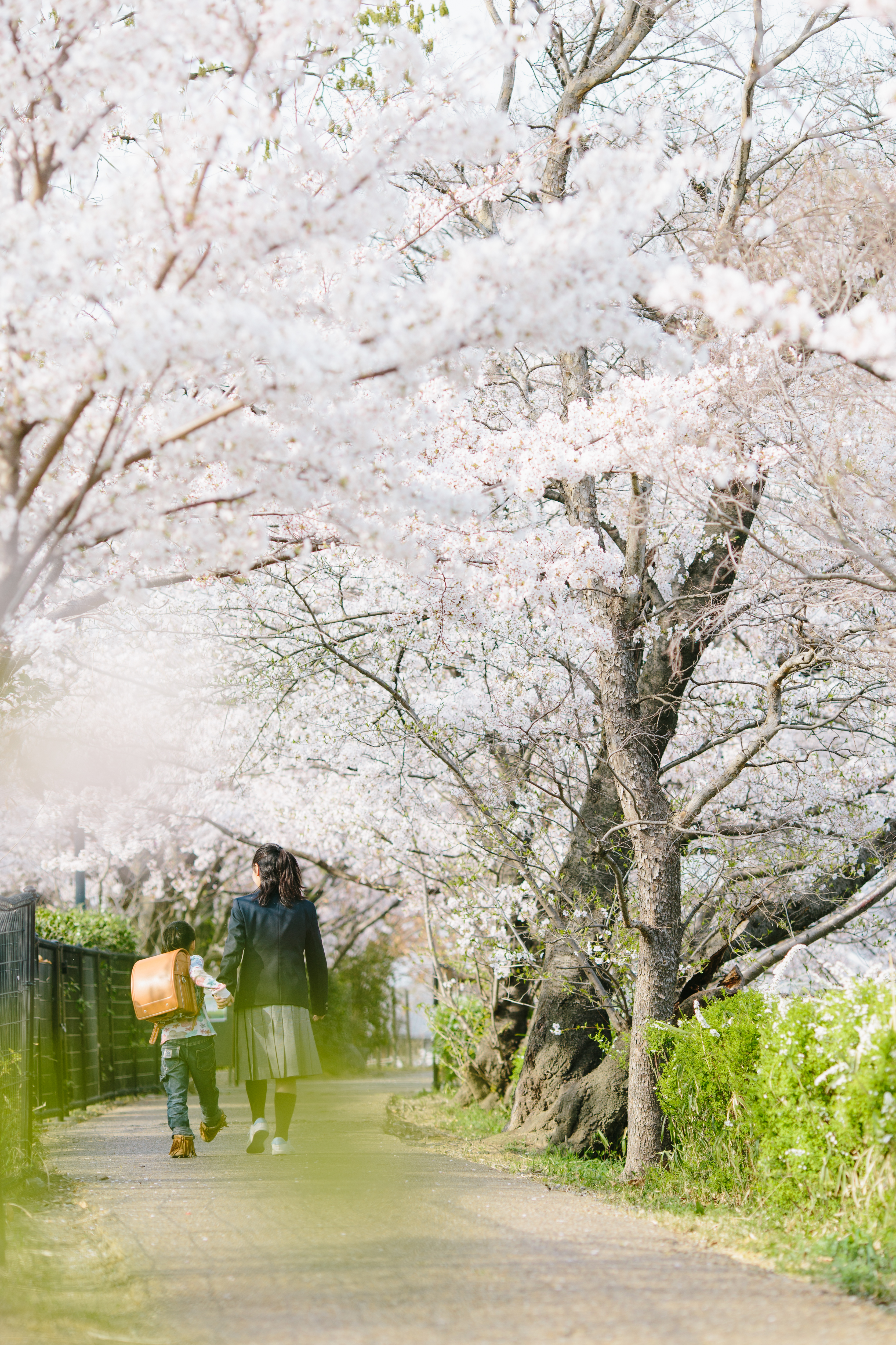 出張写真撮影 入園 入学 大阪 京都 兵庫 奈良4