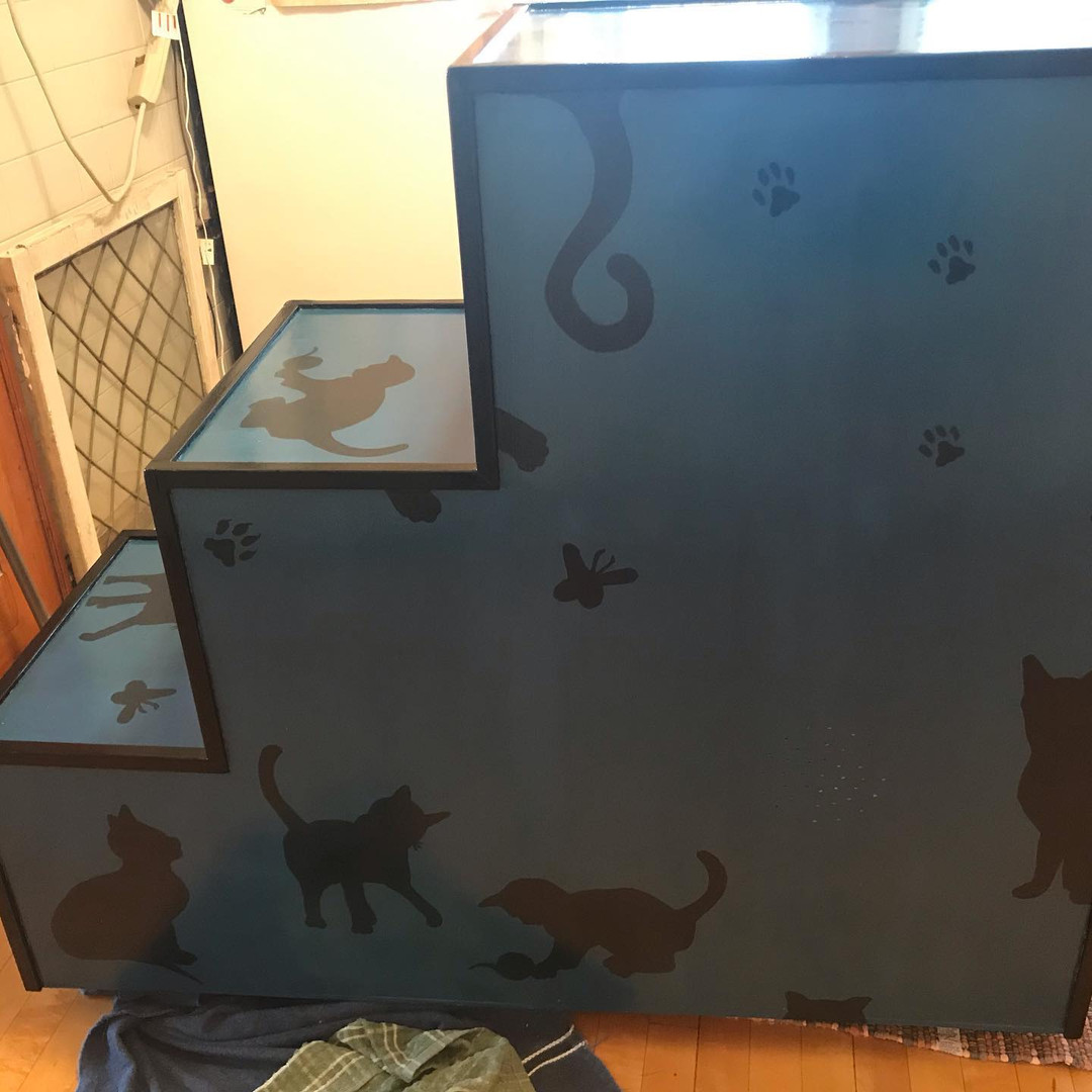 Back_Catbox.jpg