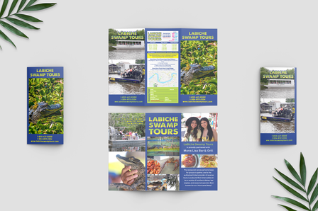 Brochure Layout and Company Logo Design