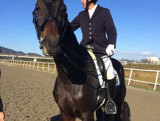 京阪地区乗馬競技会
