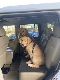 """Extra Long Bench Seat Mat, 21"""" deep, 63"""" long."""
