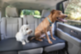 Dogs on Buster Boy Mat bench seat no-slide seat protector