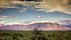 Cafayate, Salta Province