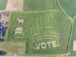 vote maze 2016