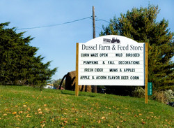 Feed Store Sign