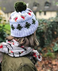 Winter Robin Beanie - Free Pattern