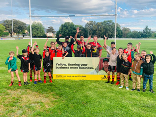 Yellow announces sponsorship of the North Tamworth Bears Junior Rugby League Club for 2021!