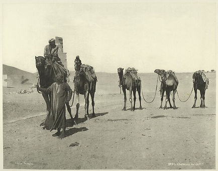 old-vintage-photos-of-egypt-1870-1875-22