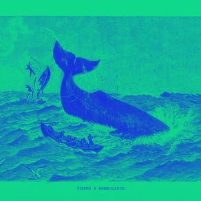 Moby Dick nunca pasa de moda