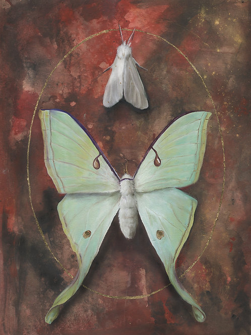 """Moths"" metallic print"