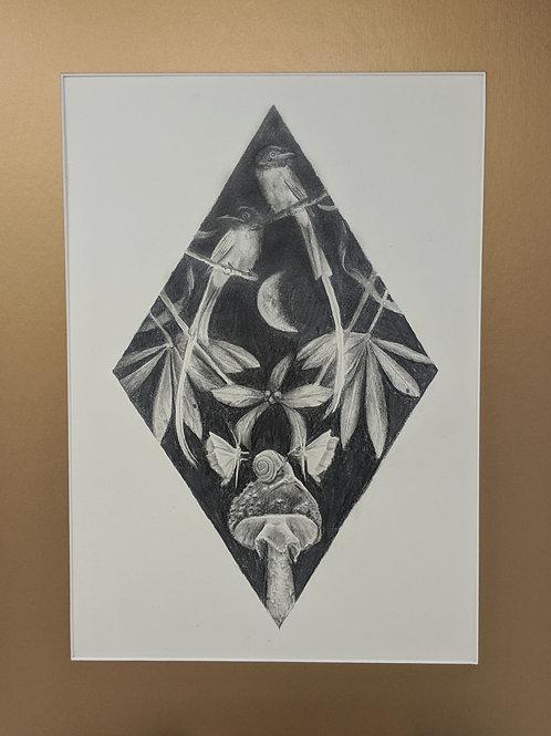 """Midnight Garden Graphite drawing 11x14"""""""